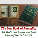 The Lost Book Of Remedies