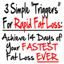 14 Day Rapid Fat Loss Macro-patterning Nutrition & Exercise System