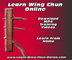 Wing Chun Martial Arts - Self Defense Techniques | Udemy