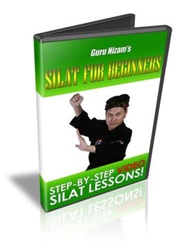 Silat For Beginners Video Training