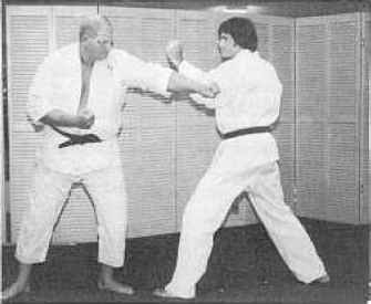 Karate Middle Punch