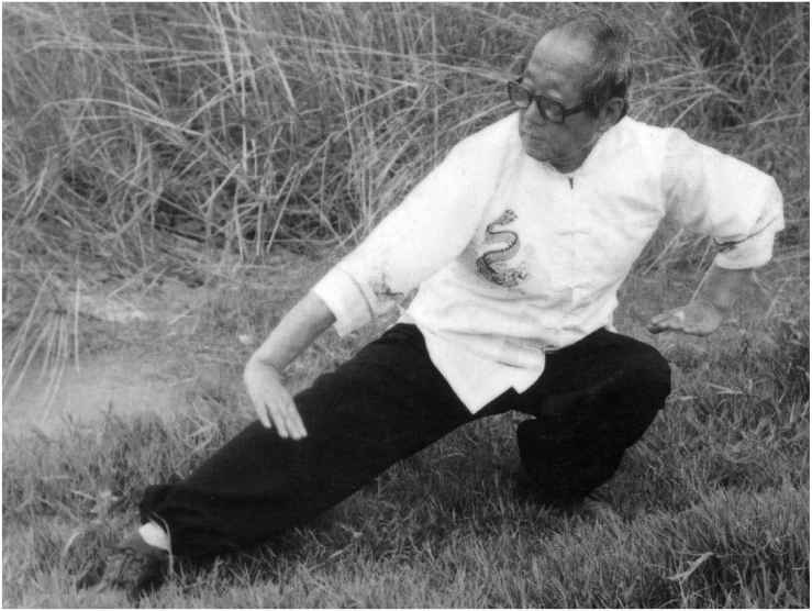 Gua Zhang Low Stance