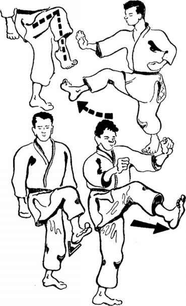 Japanese Self Defence Martial Arts