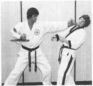 Techniques of Defense with the Tonfa - Karate Weapons