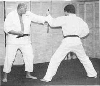 Karate Block Punch Drills
