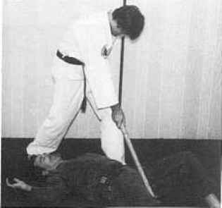 Kenpo Karate Attacker Groin