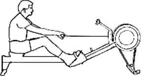 Range Motion Sequence For The Body
