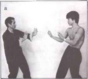 Wing Chun Double Knives